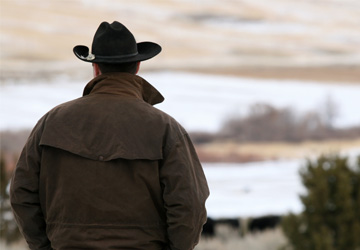 Man with cowboy hat gazing at field
